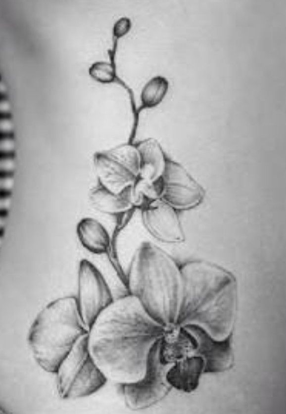 Pin By Elly On Ink Orchid Tattoo Orchid Flower Tattoos Body Art Tattoos