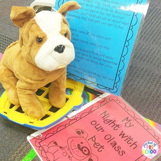 Pin By Pocket Of Preschool On Pet Theme Class Pet Pets Literacy Centers