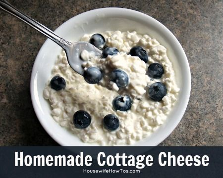 How To Make Homemade Cottage Cheese - Housewife How-To's®