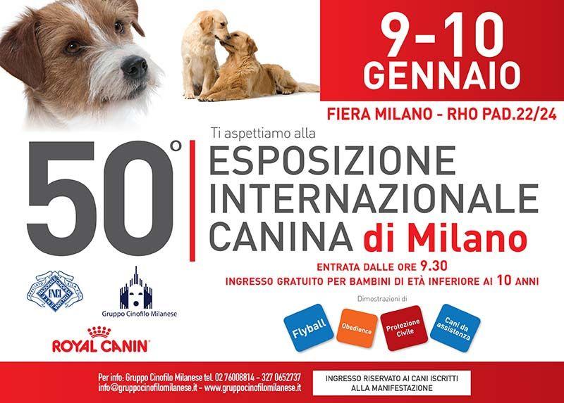 50^ Esposizione Internazionale Canina. A Milano la manifestazione canina più famosa d'Italia. Dal 9 al 10 gennaio dimostrazioni di Flyball, Obedience, Disc Dog ma anche dimostrazioni di cani di assistenza e dell'UCIS, e due Best in show http://www.ilsitodelledonne.it/?p=19227