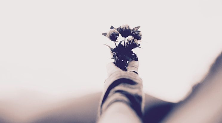 Du bist nie zu alt, um Dir ein neues #Ziel zu setzen oder einen neuen #Traum zu träumen. - #Zitat von C. S. Lewis