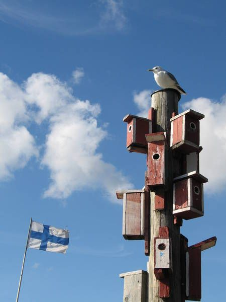 """""""Suomessa ei ole kiire"""" - Sprichwort: In Finnland gibt es keine Eile"""