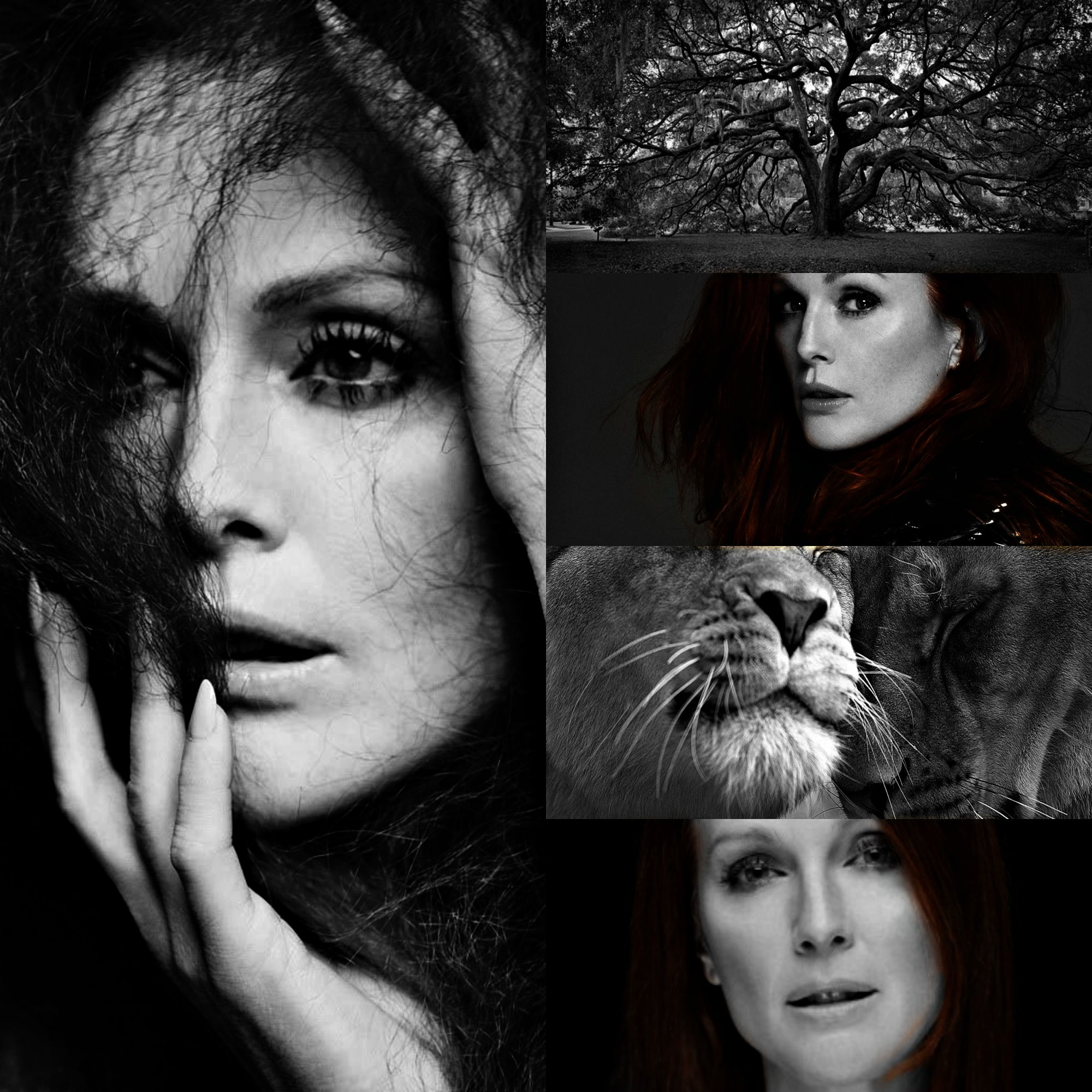 Julianne moore as rhea rhea greek is the titaness daughter julianne moore as rhea rhea greek is the titaness daughter of the earth goddess gaia and the sky god uranus in greek mythology and sister and wife biocorpaavc Image collections