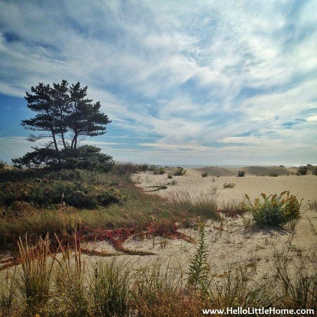 Gorgeous Rockaway Beach | Hello Little Home