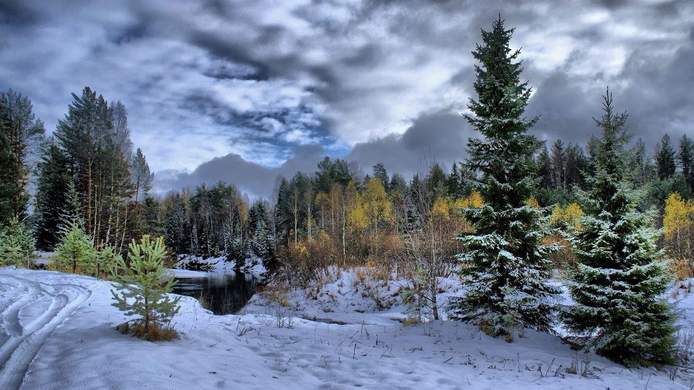 Wallpaper Schnee, Wald, Bäume, Flüsse, Winter, große / Winter ...
