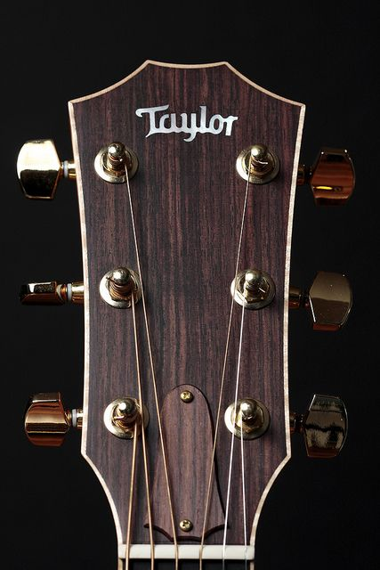 Guitar Headstocks Google Search Taylor Guitars Acoustic Taylor Guitar Taylor Guitars