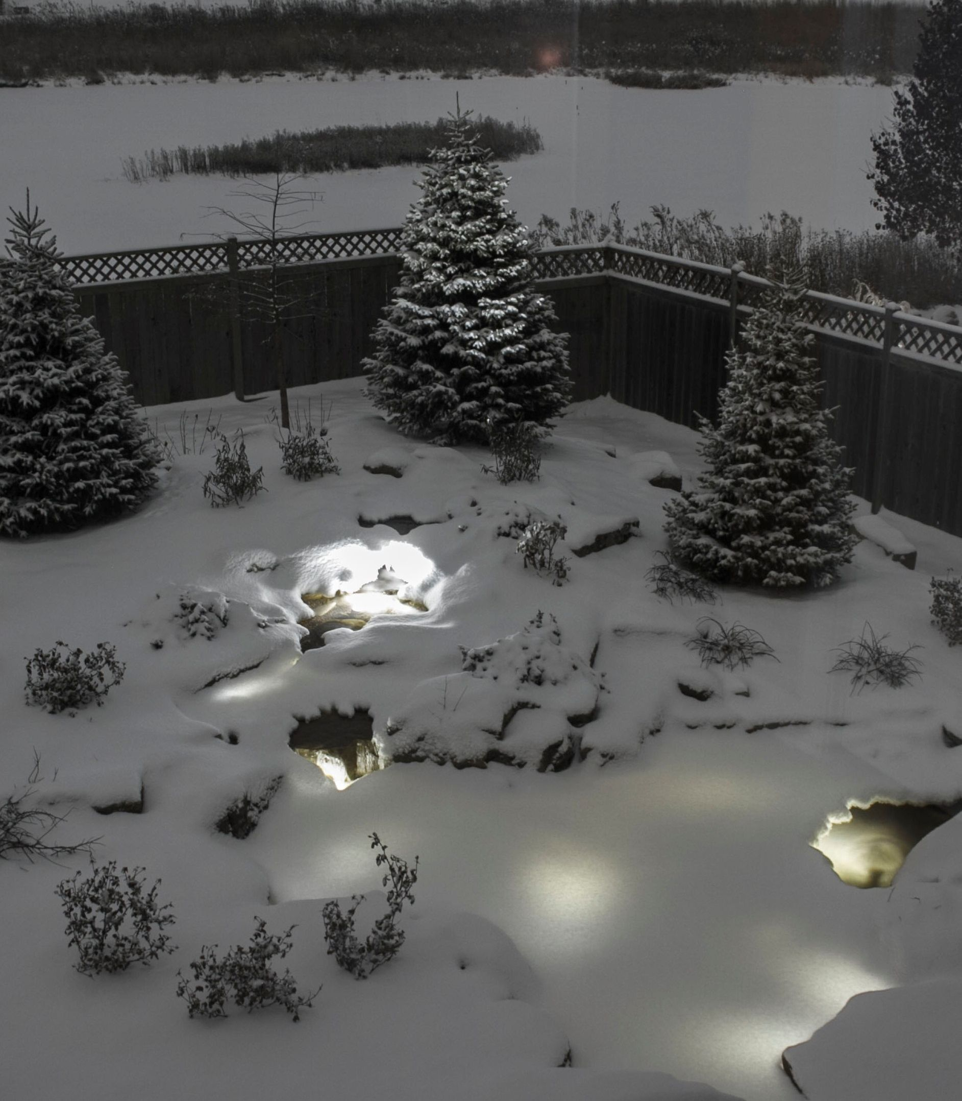 Pin By Awm Water Features On Winter Lights Koi Pond Pond Lights Pond