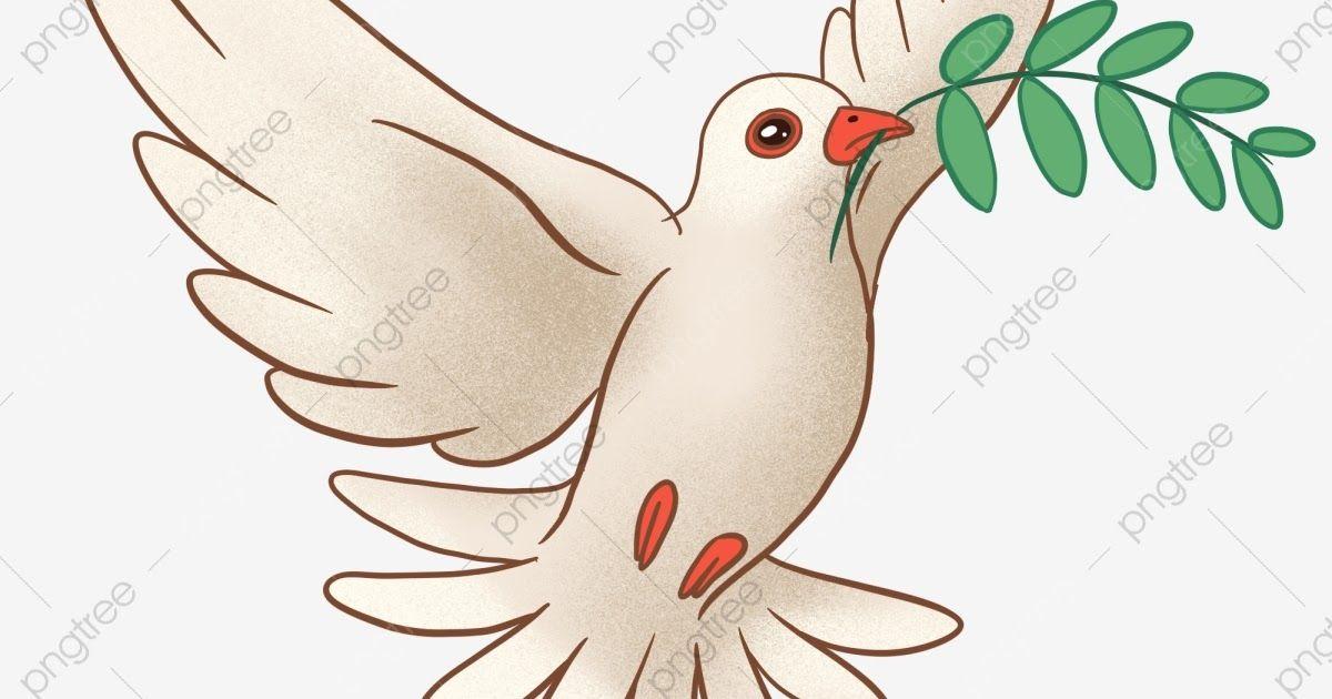 Terkeren 30 Gambar Kartun Burung Dara Burung Merpati Merpati Putih Cawangan Zaitun Burung Zaitun Download Romantis Gifs Tenor Gambar Gambar Kartun Burung