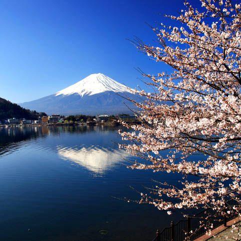 Rejser Japan: Alt om din ferie til Japan - Albatros Travel