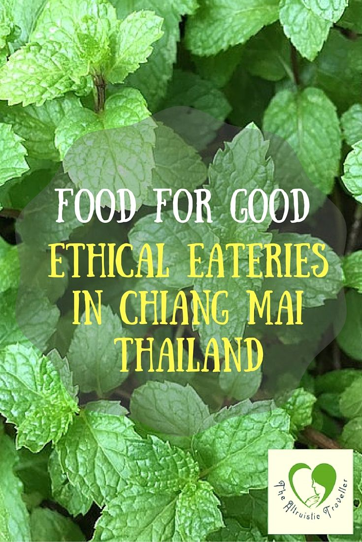 A list of ethical restaurants in Chiang Mai Thailand
