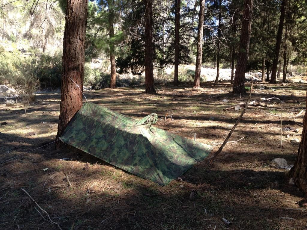 003 Camo poncho blending in nicely Tarpology Tarp shelters