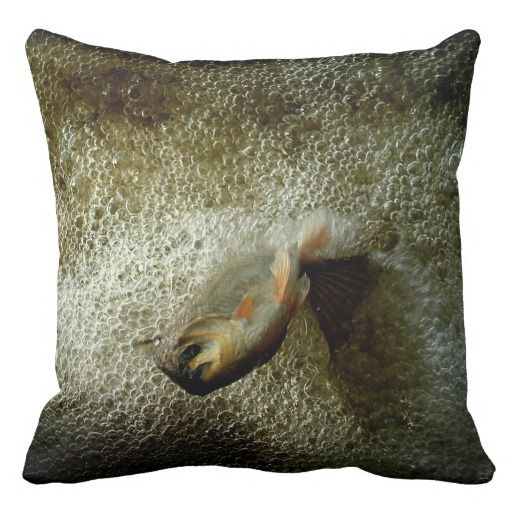 ==> consumer reviews          Little Mermaid Throw Pillow           Little Mermaid Throw Pillow We have the best promotion for you and if you are interested in the related item or need more information reviews from the x customer who are own of them before please follow the link to see fully r...Cleck See More >>> http://www.zazzle.com/little_mermaid_throw_pillow-189840527429873569?rf=238627982471231924&zbar=1&tc=terrest