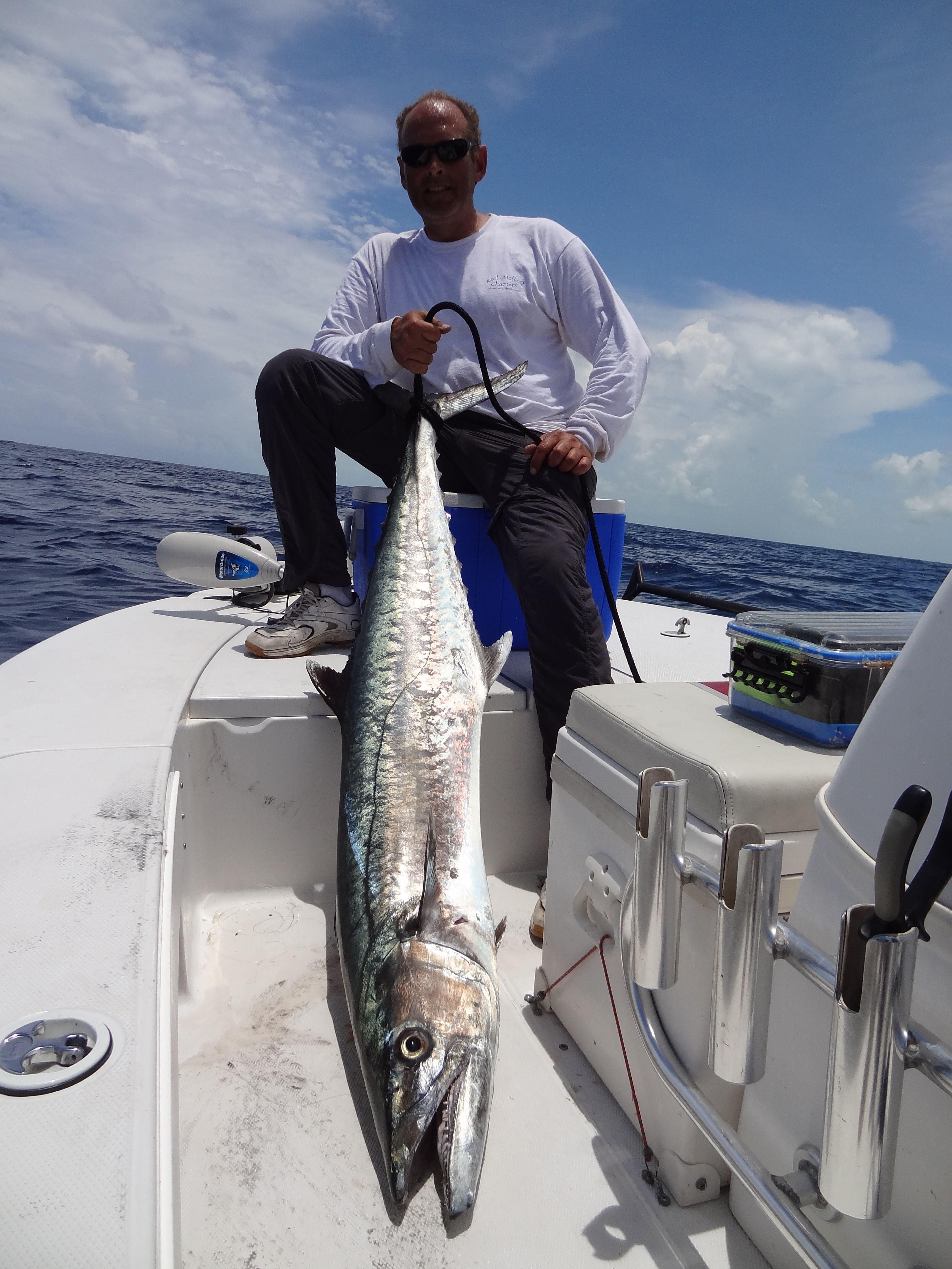 Mike Mell With A Huge Kingfish Kingfish Www Reelmello Com Salt Water Fish Fish Fish Art
