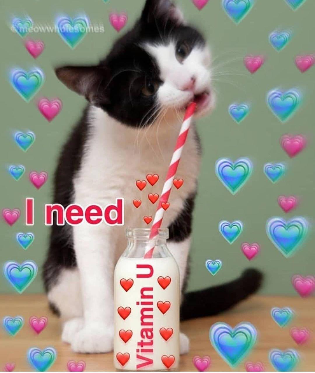 I Didn T Sleep Lmaoo Cute Memes Love You Meme Cute Love Memes