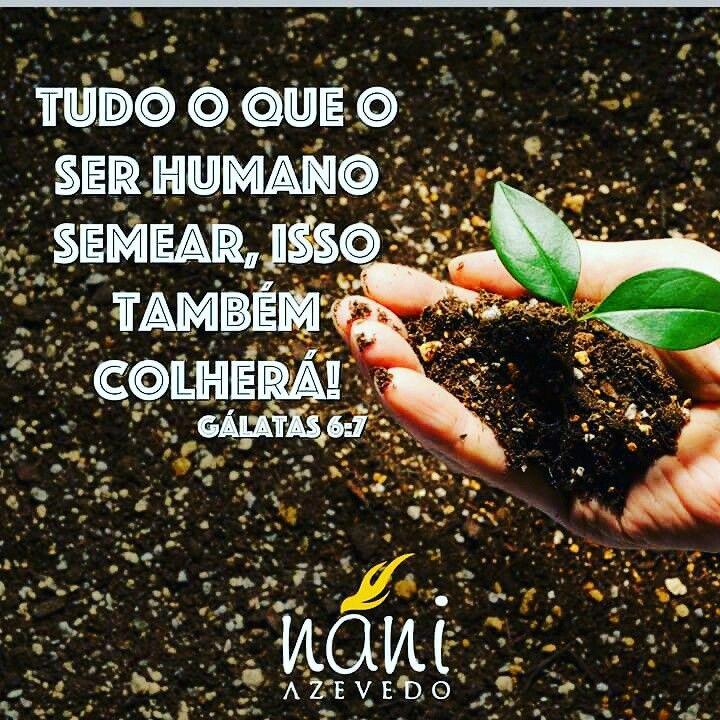 Ideia Por Fernando Vanessa Em Imagens Mensagens Imagens