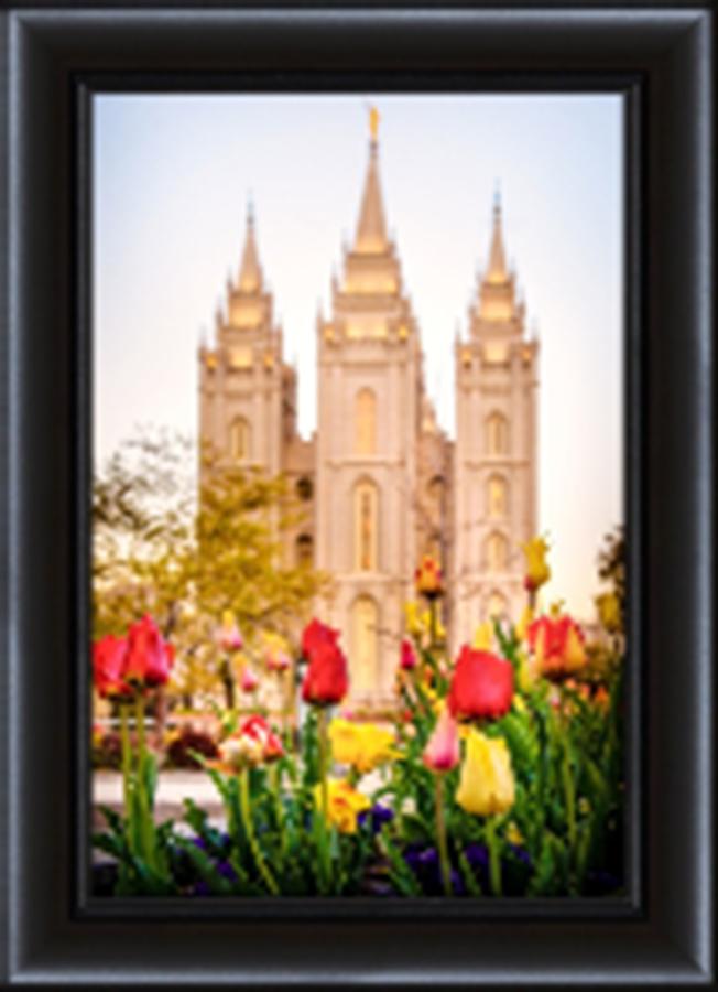 Framed Salt Lake Temple Tulips (#D-LDSWA-SJ-SLTT2-8D19438) - Temple ...