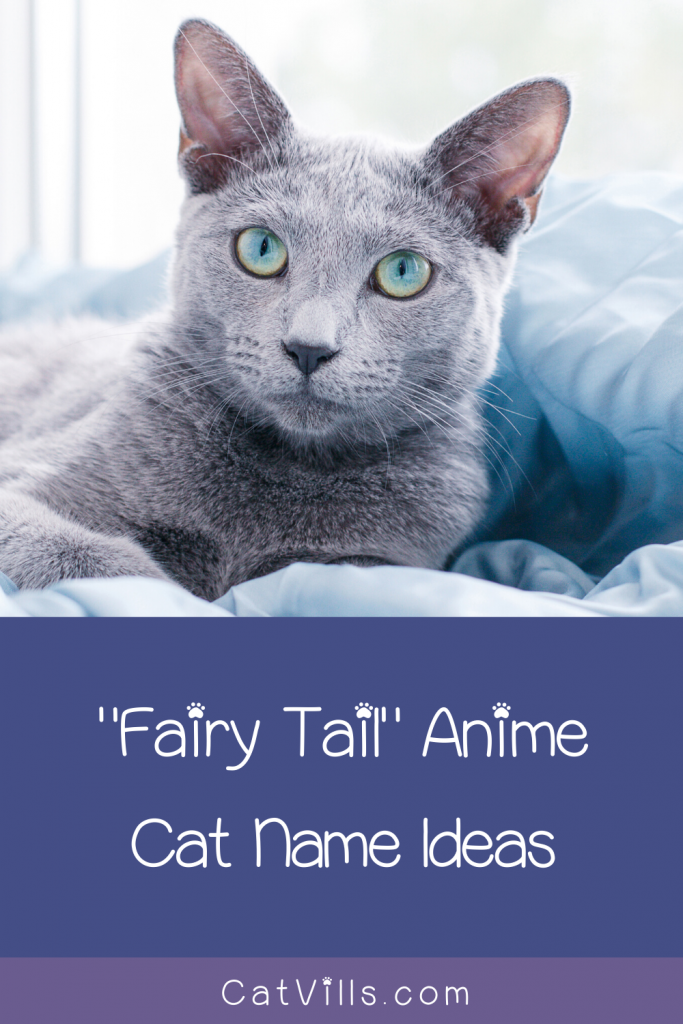50 Adorable Fairy Tail Cat Names Pun Intended Fairy Tail Cat Cat Names Funny Cat Memes