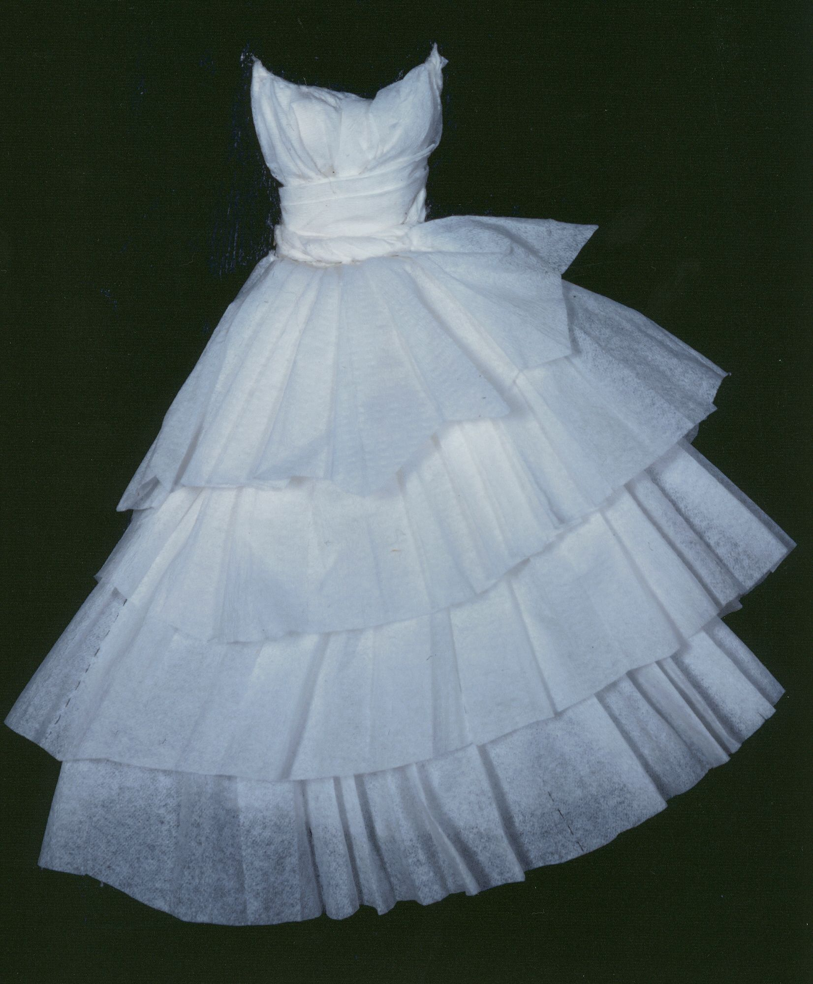 Paper Wedding Dress | ... paper dresses that she made. The series is ...