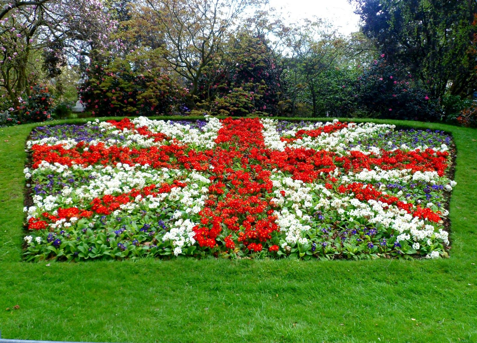 Union Jack themed flower bed (With images) Plants