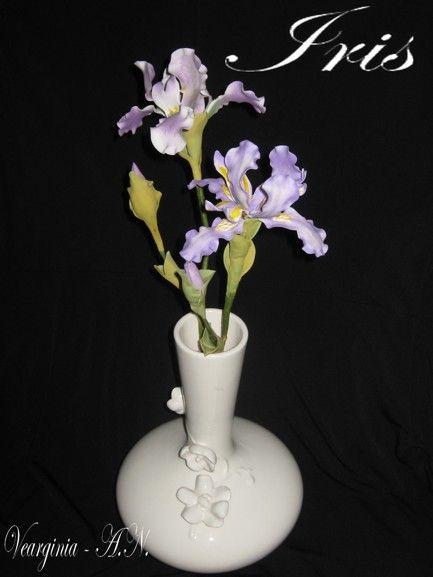Kosatec ( Iris ) , Kvety, fotopostupy | Tortyodmamy.sk