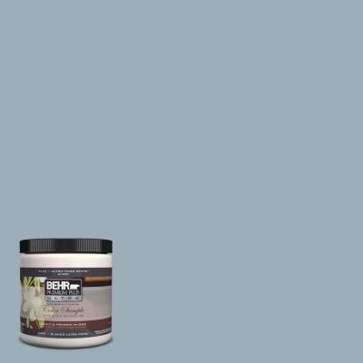 BEHR Premium Plus Ultra Home Decorators Collection 8 oz #HDC-CT-24