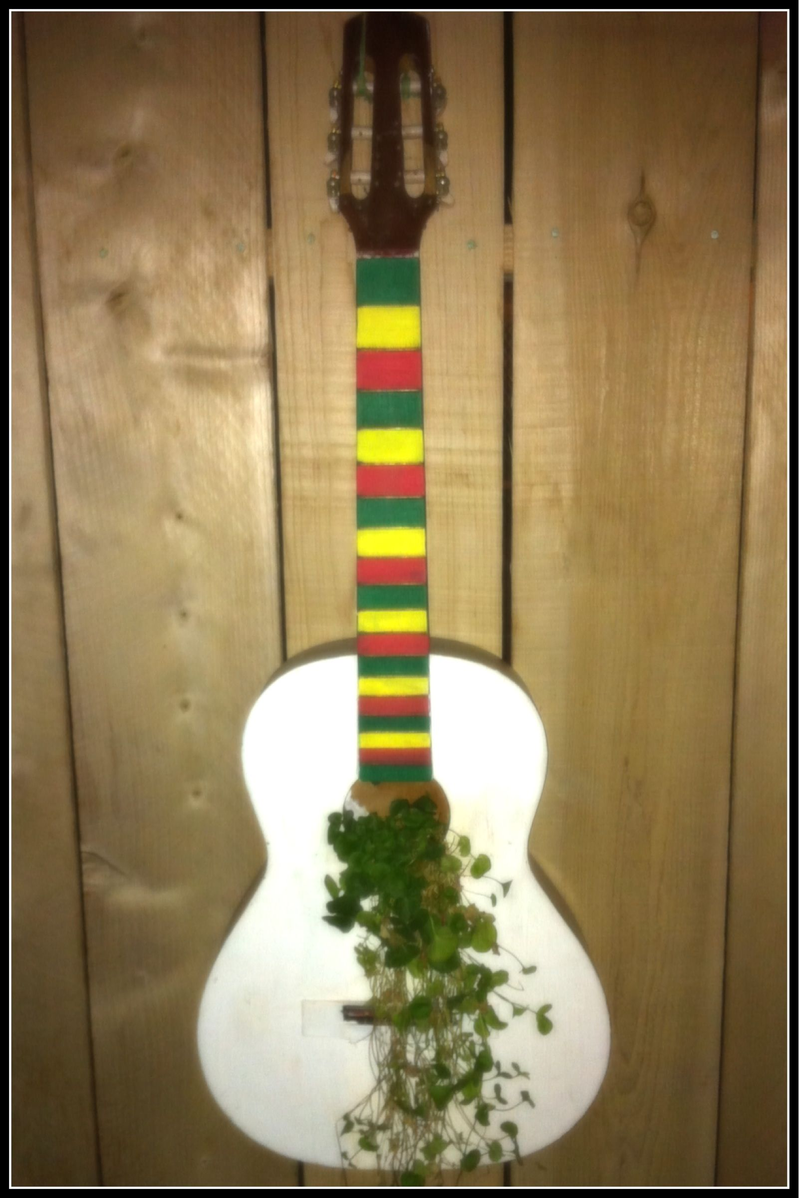 Turn An Old Guitar Into A Planter Looks Really Cool With Vine Washburn Lyon Wiring Diagram Hanging Out Through The Sound Hole
