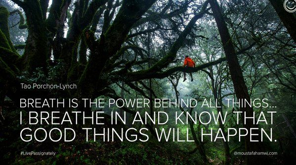 Moustafa Hamwi (@MoustafaHamwi) | Twitter  #Breath is the power behind all things…I breathe in and know that #goodthings will happen. #thinkpositive #passion #TaoPorchonLynch #Yoga #Yogateacher #Yogainstructor #Positive #PositiveAttitude #PositiveThoughts #Life #Lifeinspire #Lifestyle #Yogastyle #Quote #Quotes #LivePassionately #MoustafaHamwi