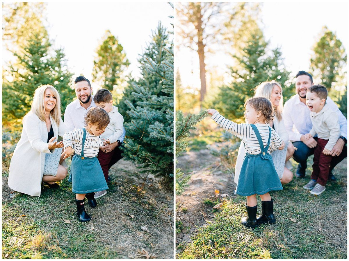 Baird Tree Farm Pictures Utah Family Photographer Truly Photography Tree Farm Pictures Utah Family Photographer Farm Pictures