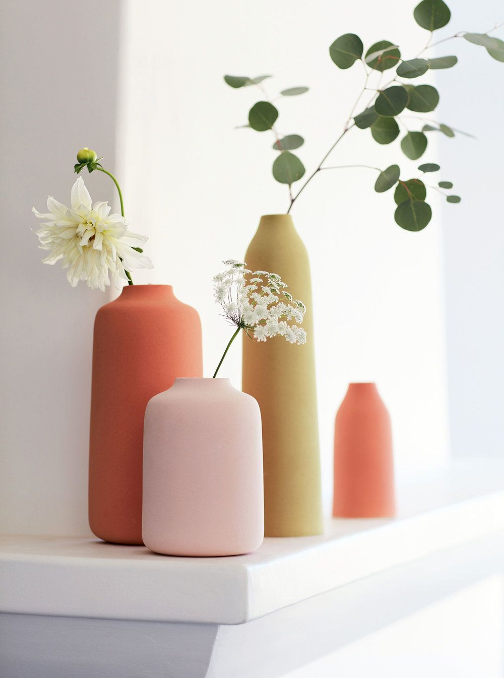 Simply Beautiful Single Stems In Vases Photographer Debi Treloar