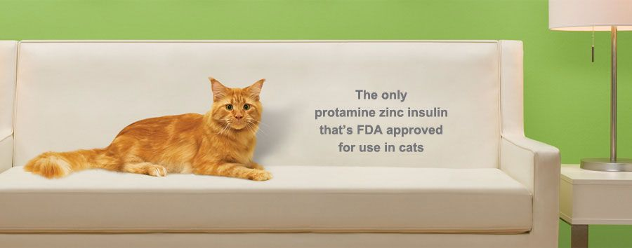 ProZinc™ Home Pets, Veterinary medicine, Home