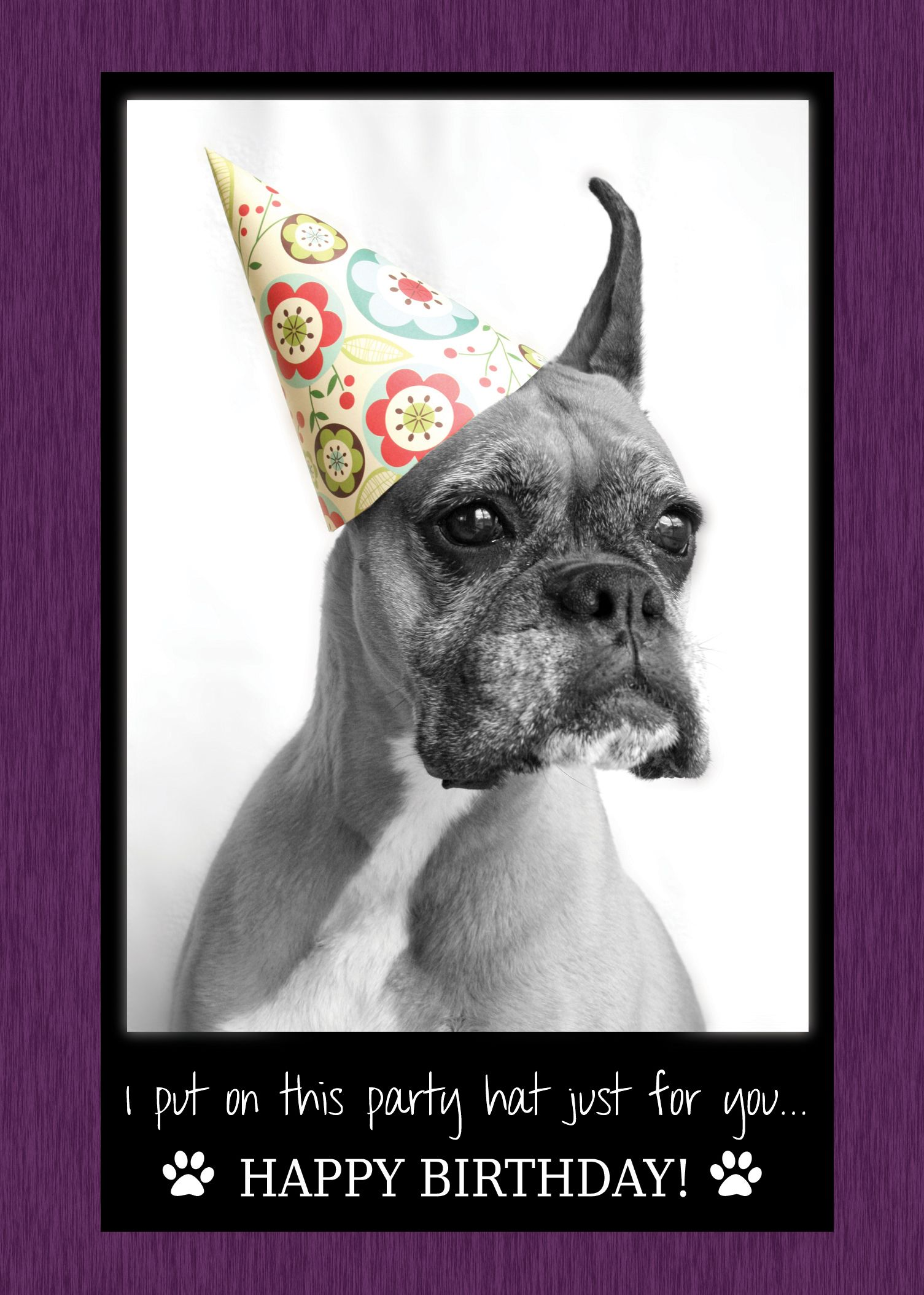 I Put On This Party Hat Just For You Happy Birthday Card Features A Boxer Named Jer Happy Birthday Dog Happy Birthday Quotes Happy Birthday Quotes Funny