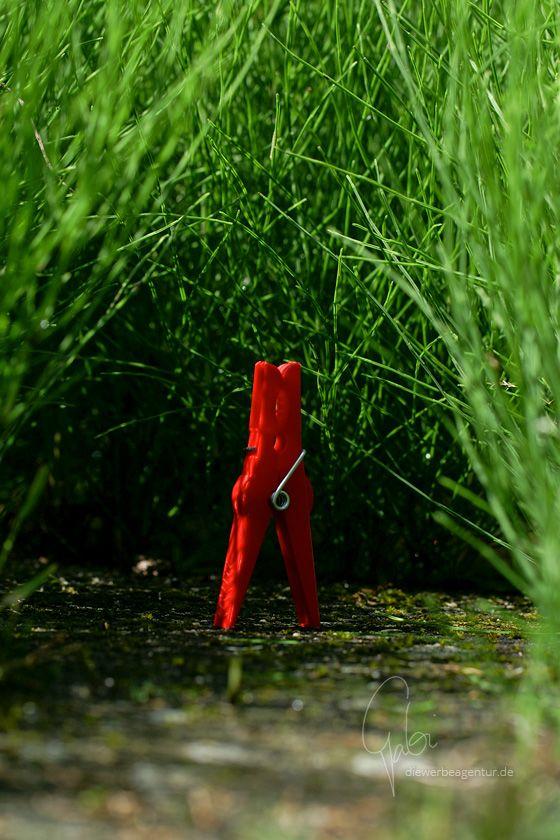 0018 Dschungelfieber --- Jungle fever #klammerpic #rot #clothespin #red #ontour