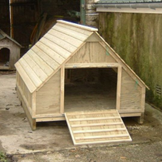 The Large Duck House - Housing - 5M Retail