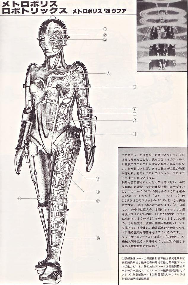 Maria Robot Diagram By Yuji Kaida