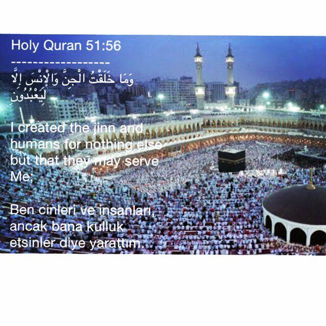Holy Quran 51 56 و م ا خ ل ق ت ال ج ن و ال إ ن س إ ل ا ل ي ع ب د ون I Created The Jinn And Humans For Nothin Hadeeth Quran Holy Quran