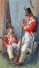 British soldiers in the peninsular war