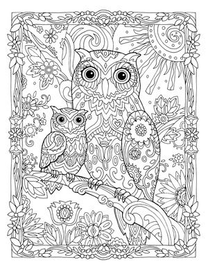 Creative Haven Owls Colouring Book By Marjorie Sarnat Owl And