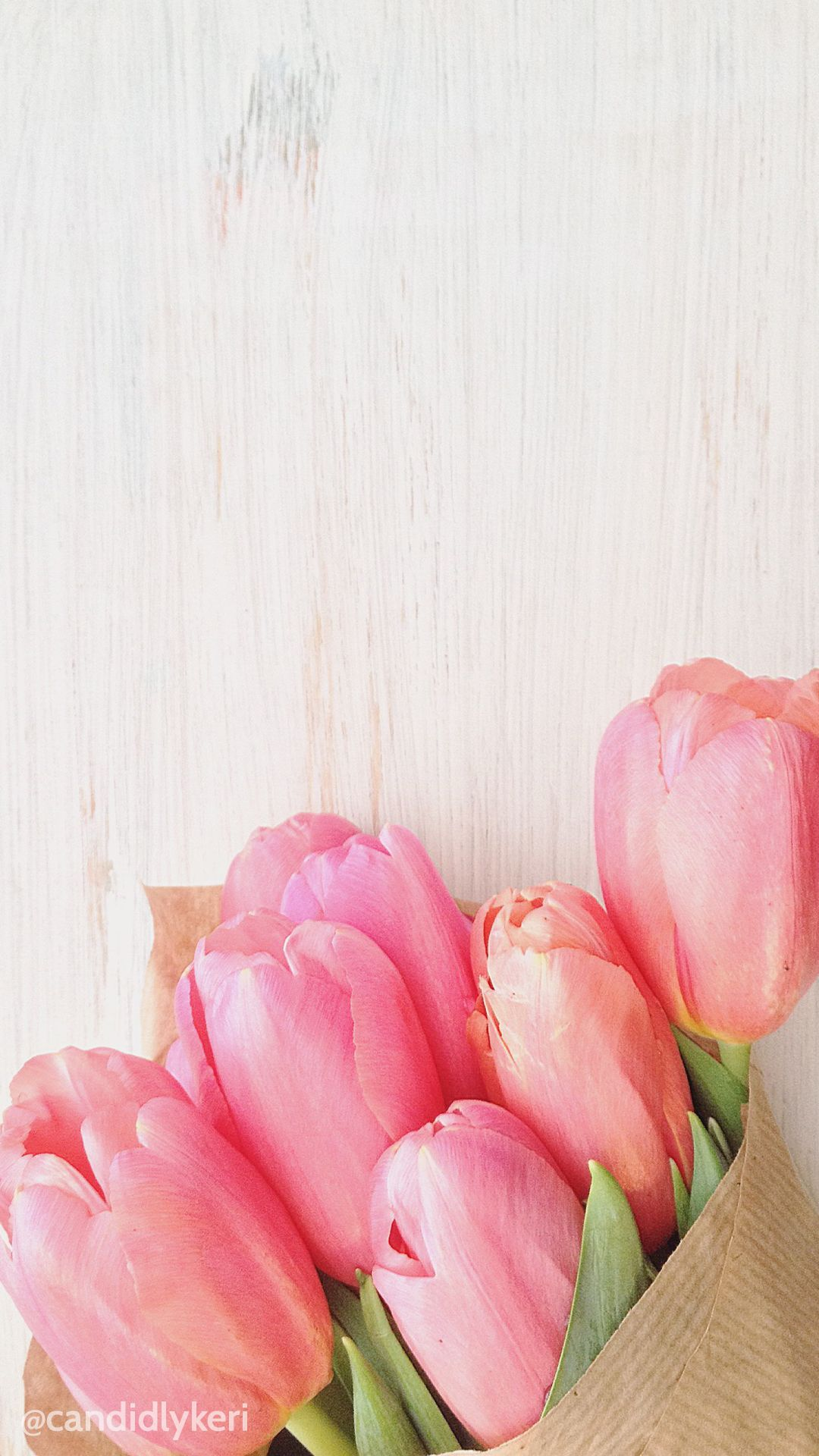 Cute Flower Tupils Pink With Wood Background Wallpaper You Can