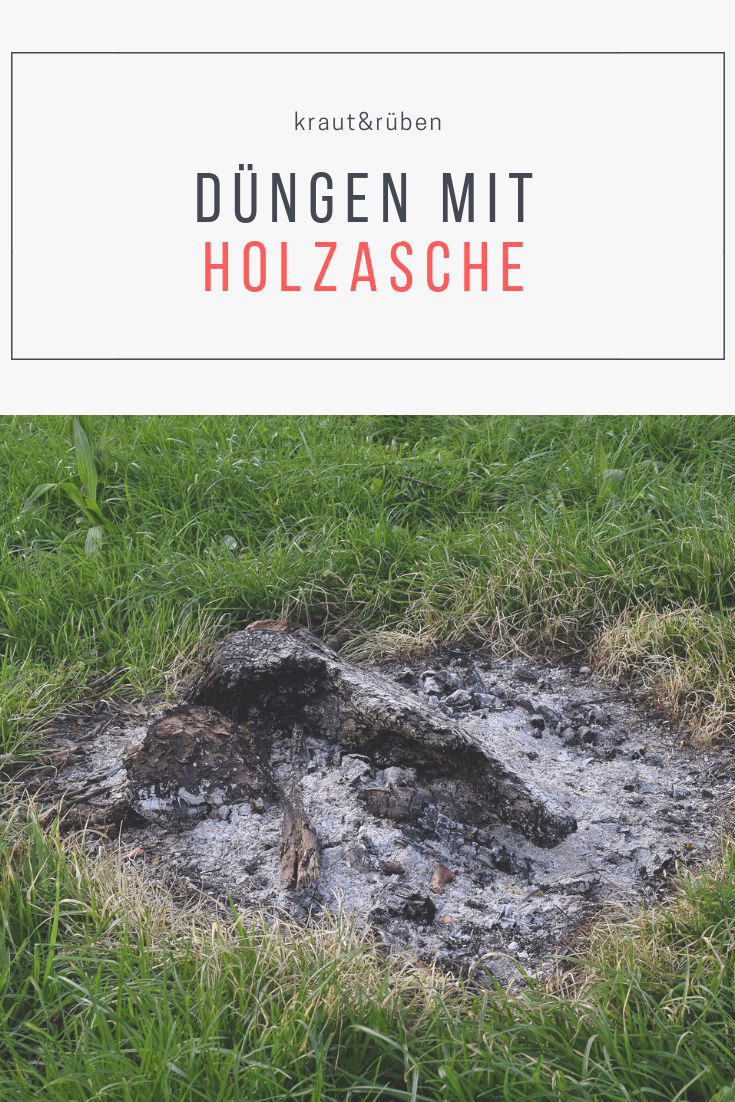 Düngen mit Holzasche? | Pflanzenschutz | Garden, Grow your ...