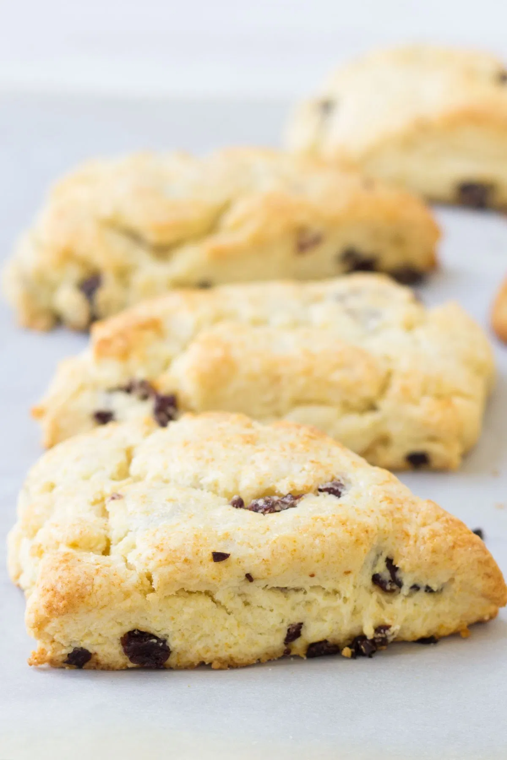The Best Light And Flaky Cream Scones This Easy Scone Recipe Is Made With Heavy Whipping Cream And Scones Recipe Easy Sweet Scones Recipe Cream Scones Recipe