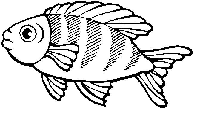 Kleurplaat Vis Zwa Ths 8alassas Pinterest Coloring Pages Fish