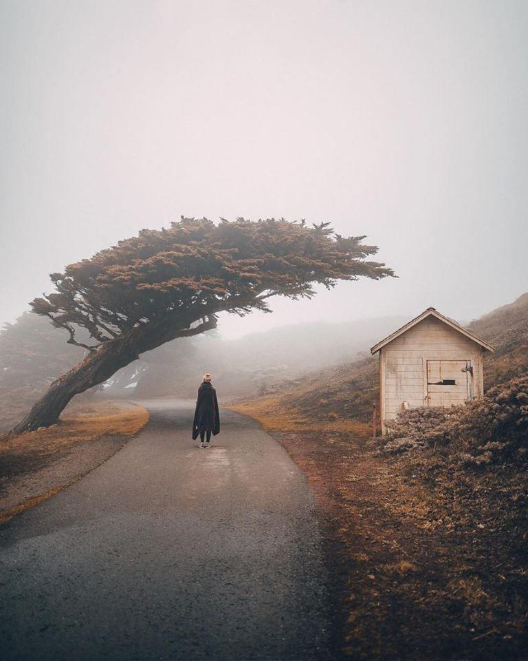 « L'expérience de l'inconscient entraîne l'isolement. Beaucoup ne peuvent pas le supporter. Pourtant le colloque solitaire avec le soi est l'expérience la plus haute et la plus décisive de l'être humain. Car quelqu'un doit déjà être seul pour ressentir ce qui le porte, quand il n'est plus en mesure de se porter lui-même. »  Jung ,  Dialectique du moi et de l'inconscient .  (art by Kevin Ringli)