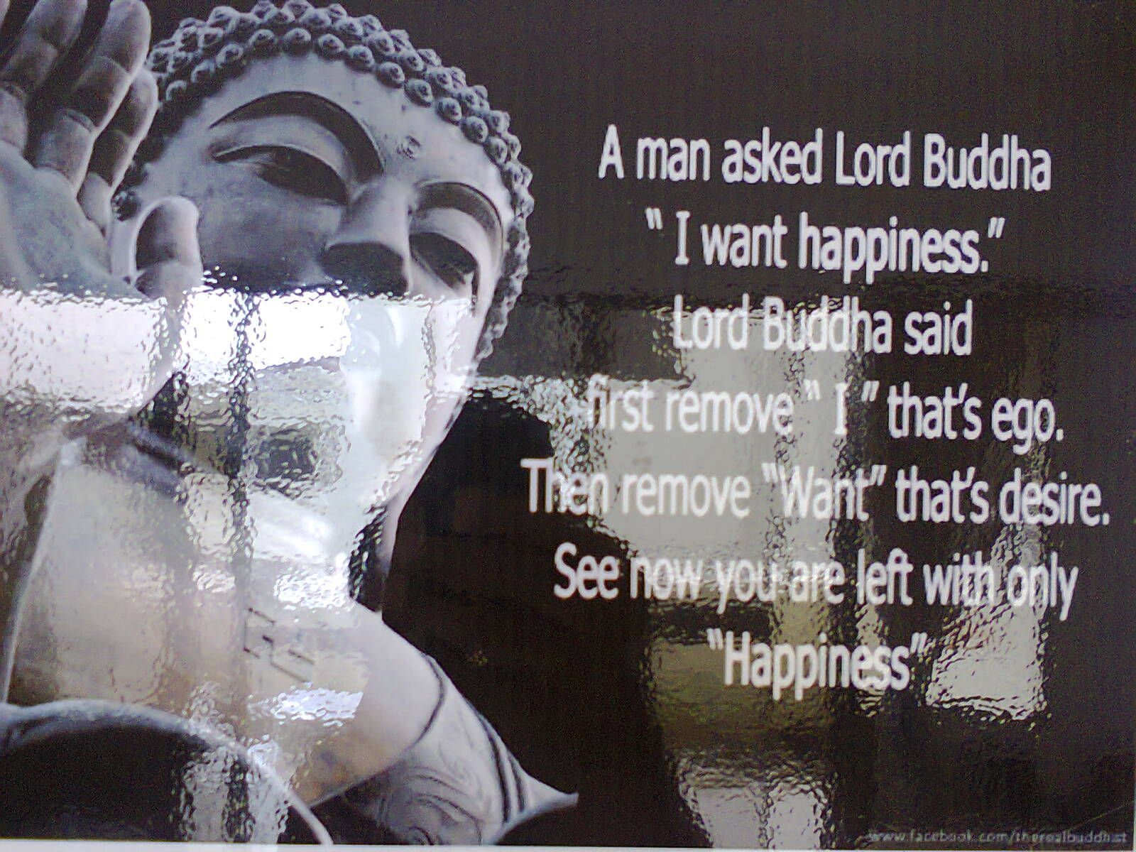 Buddhist Quotes On Love Lord Buddha Said  Buddha Quote Buddha And Lord