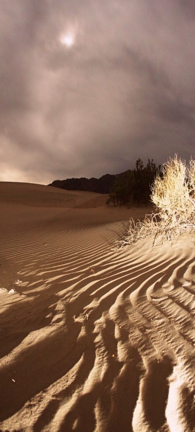 Pin by War*rior on Parched Desert Beautiful nature