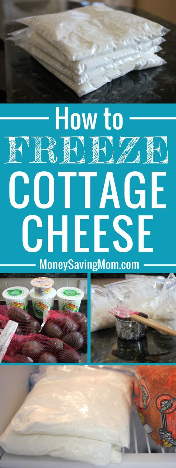 Astonishing How To Freeze Cottage Cheese Freezer Cooking Frozen Download Free Architecture Designs Scobabritishbridgeorg