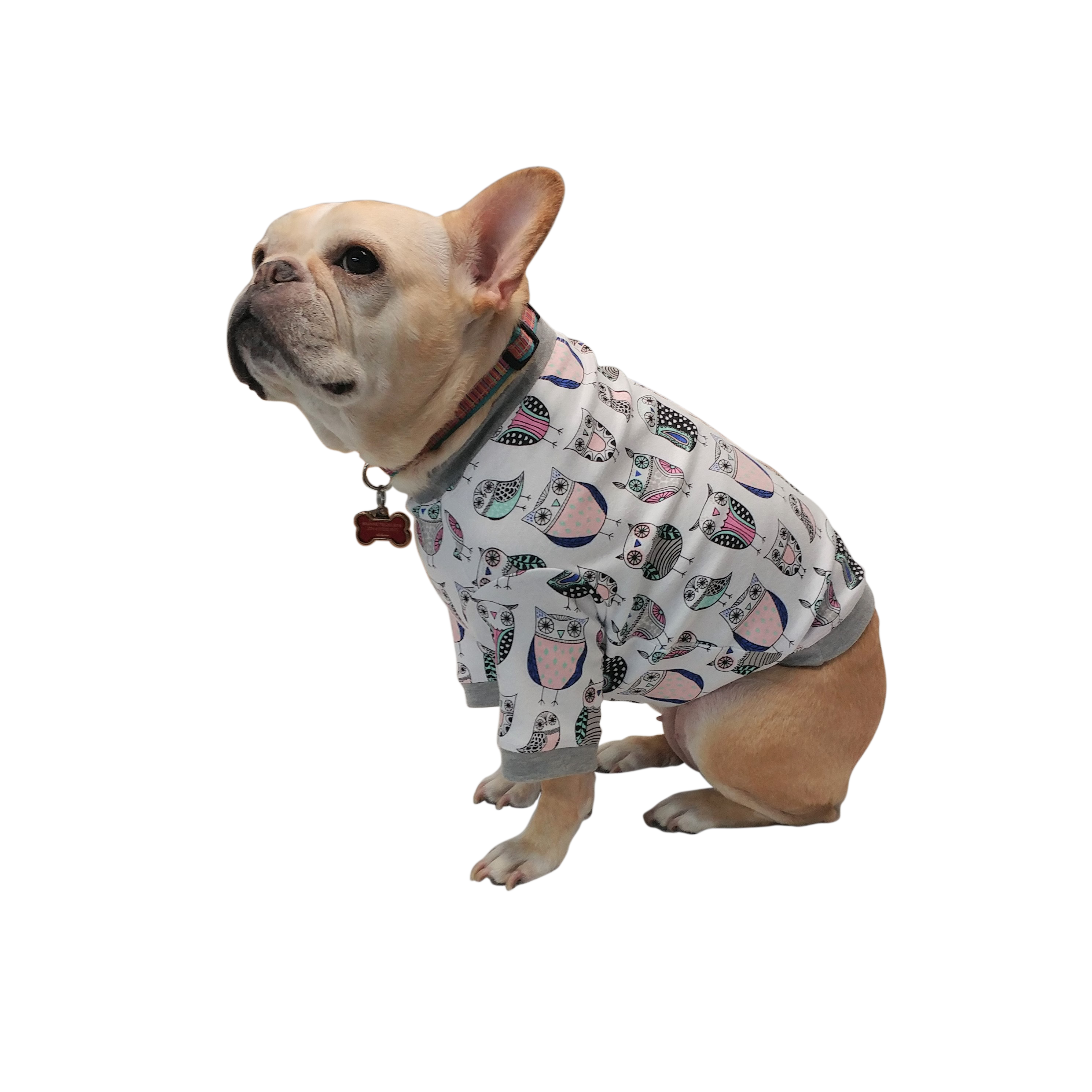 Owls Long Sleeve Tee Girl, dog, French bulldog clothes