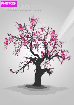 Cherry Blossom Tree Drawing Cherry Blossom Tree Cherry Blossom Tree Tattoo Tree Drawing Cherry Blossom Tree