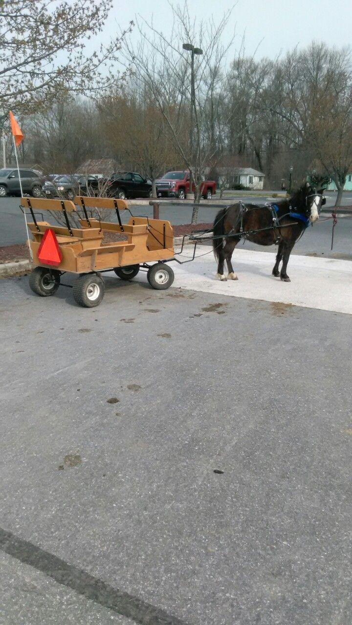 Seen at Byler's near Dover, Delaware. Amish Pony Carts