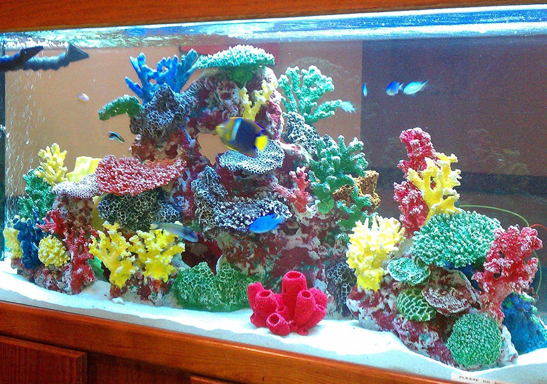 Amazon Com Instant Reef Dm012 Artificial Coral Reef Aquarium Artificial Coral Coral Reef Aquarium Coral Aquarium