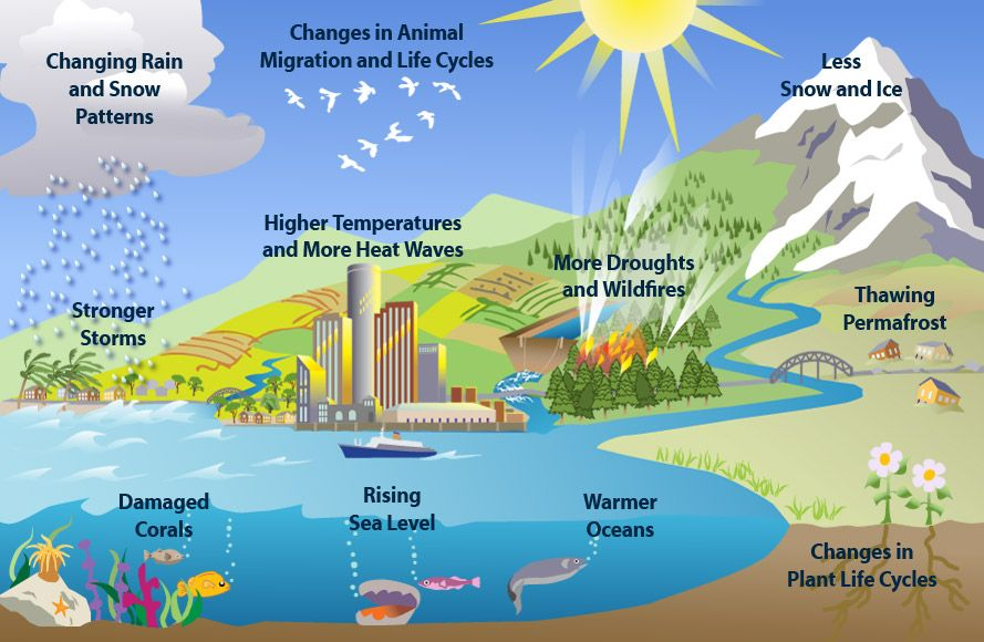 Clues Of Climate Change Scientists Look In Many Places To Find Clues